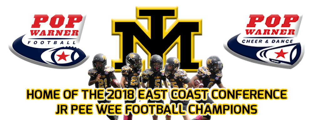 Banner 2018 champs