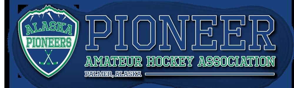 palmer amateur hockey association