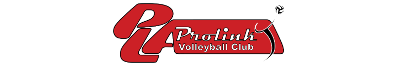 Prolink letterhead web 2