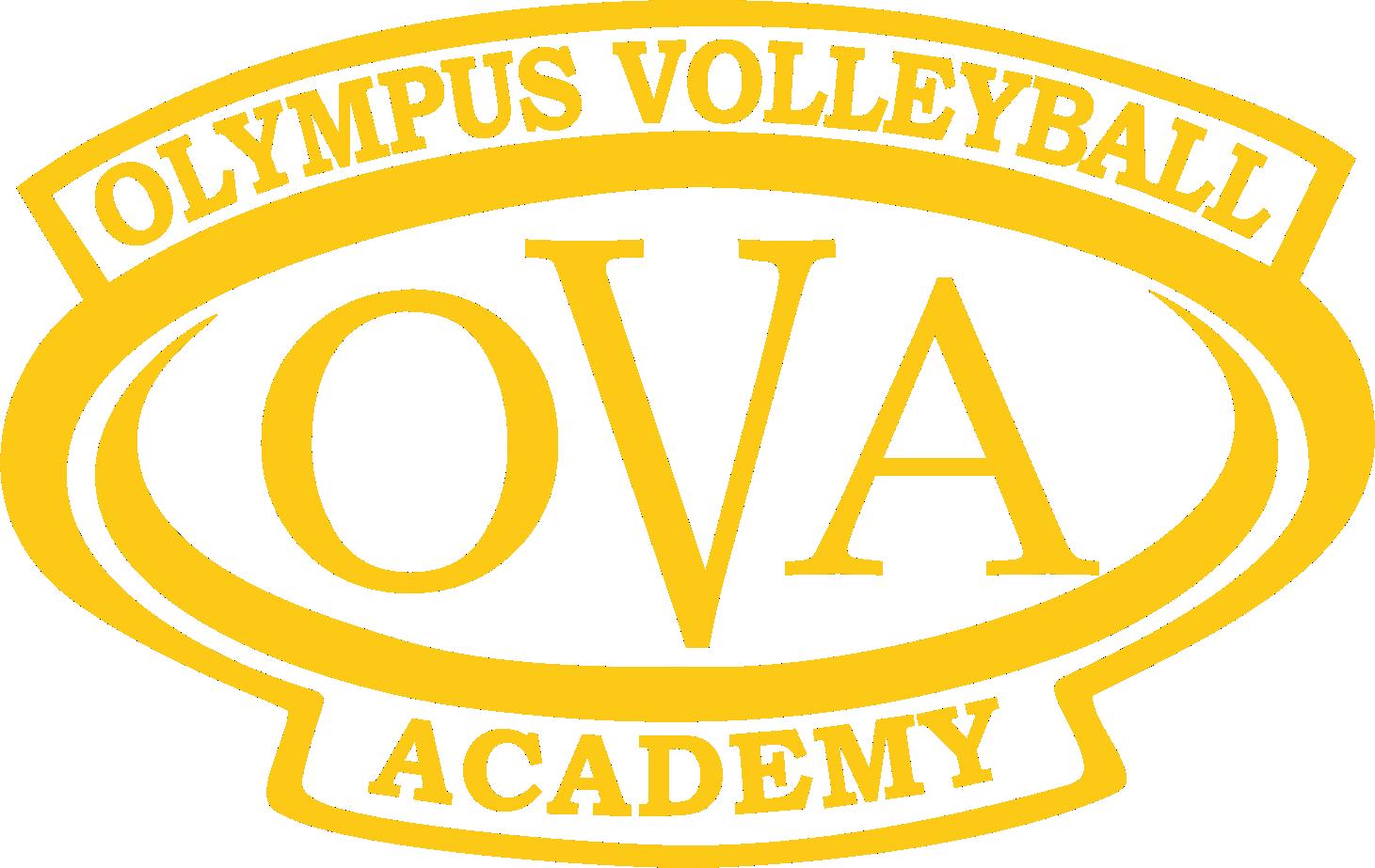 Small olympus volleyball academy omg art