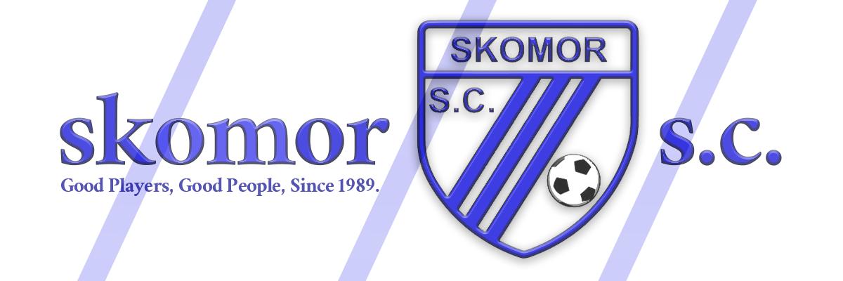 Skomor banner blue stripe 1