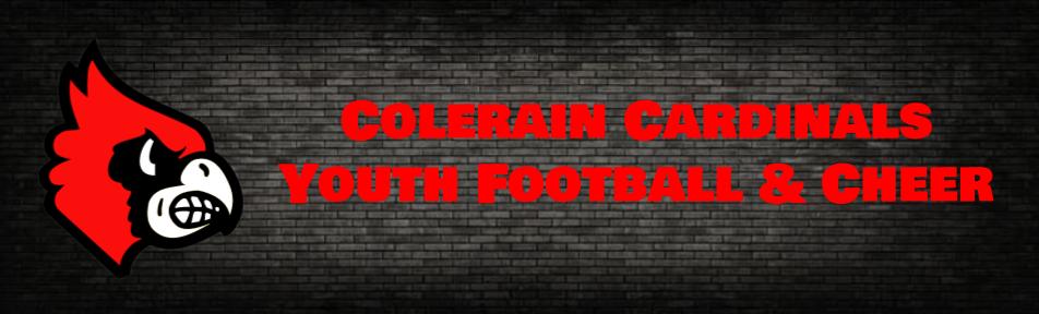 ccyf banner