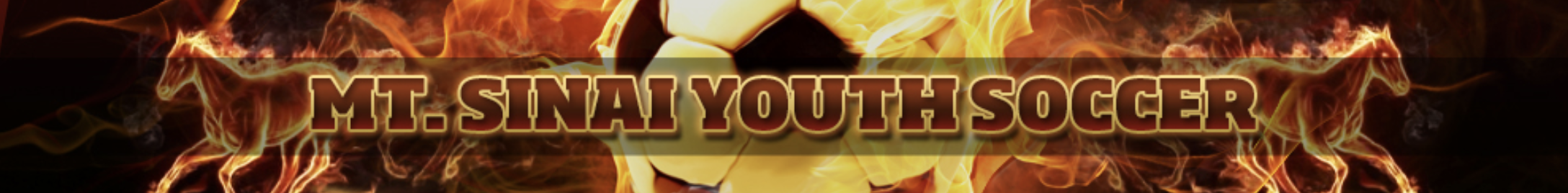 Msys banner