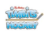 Timbitshockeystick