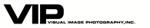 Vip logo sm
