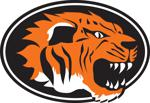 Tiger logo with oval