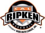 Cal ripken division logo