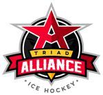 Triad alliance logo rd3 working