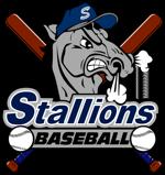 Stallions bats logo 1