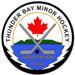 TBMHA Logo