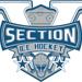 Section V Ice Hockey Logo