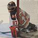 Matt Crawford named Pee Wee Major player of the Week for week ending September 8