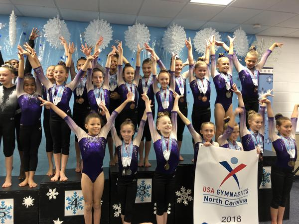 16e0189ca7d2 Everest Gymnasts Excel at Compulsory State Meet
