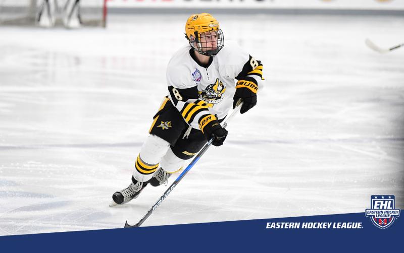 Eastern Hockey League