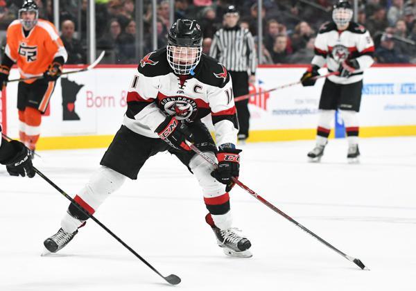 MN H.S.: Mittelstadt, Zumwinkle Highlight 2017 High School Hockey Awards
