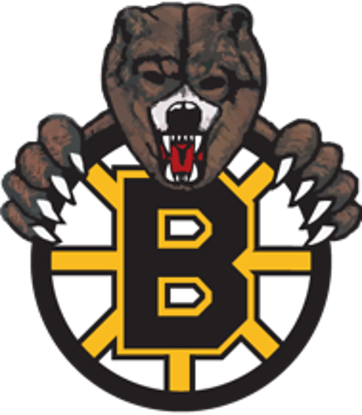 Bruins Announce 2018 NCDC Tryout Camp Dates