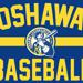 Baseball Oshawa needs ELITE coaches for 2021 season