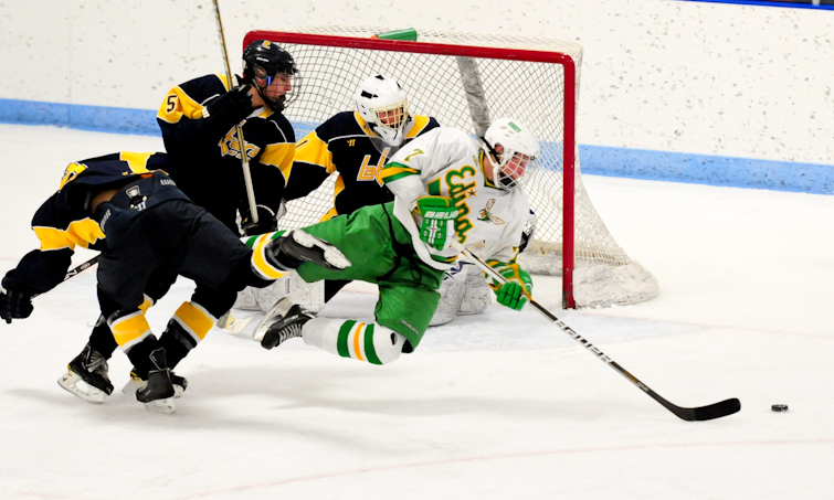Edina flies past Lakers into section finals 8ec0036f5