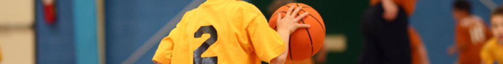 LPAA Basketball