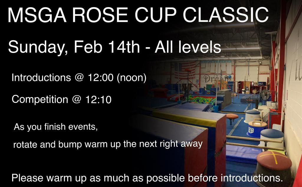 The Metro South Gymnastics Academy:  Rose Cup Classic