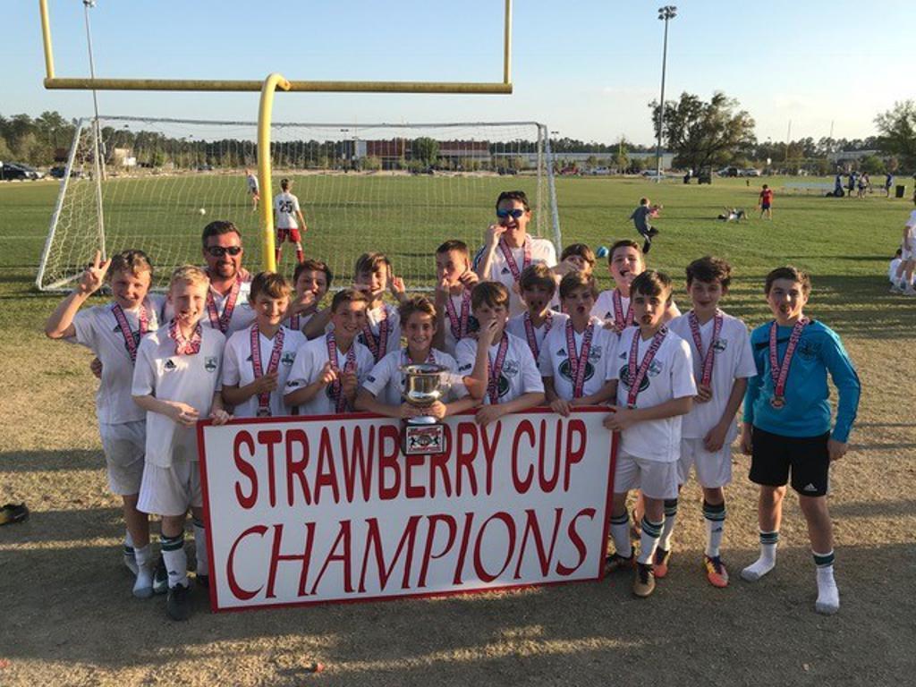 2018 13U Boys Strawberry Cup Champions