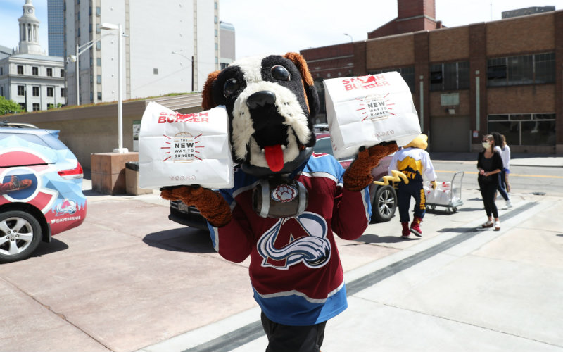 Take a look at Bernie and say you don't like St. Bernards. You can't — he's a good boy. Photo courtesy of the Colorado Avalanche