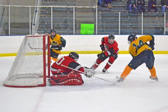 rosemounthockey.org