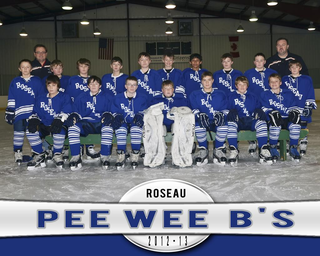 roseauhockeyonline.com