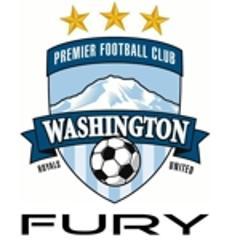 Fury square logo small