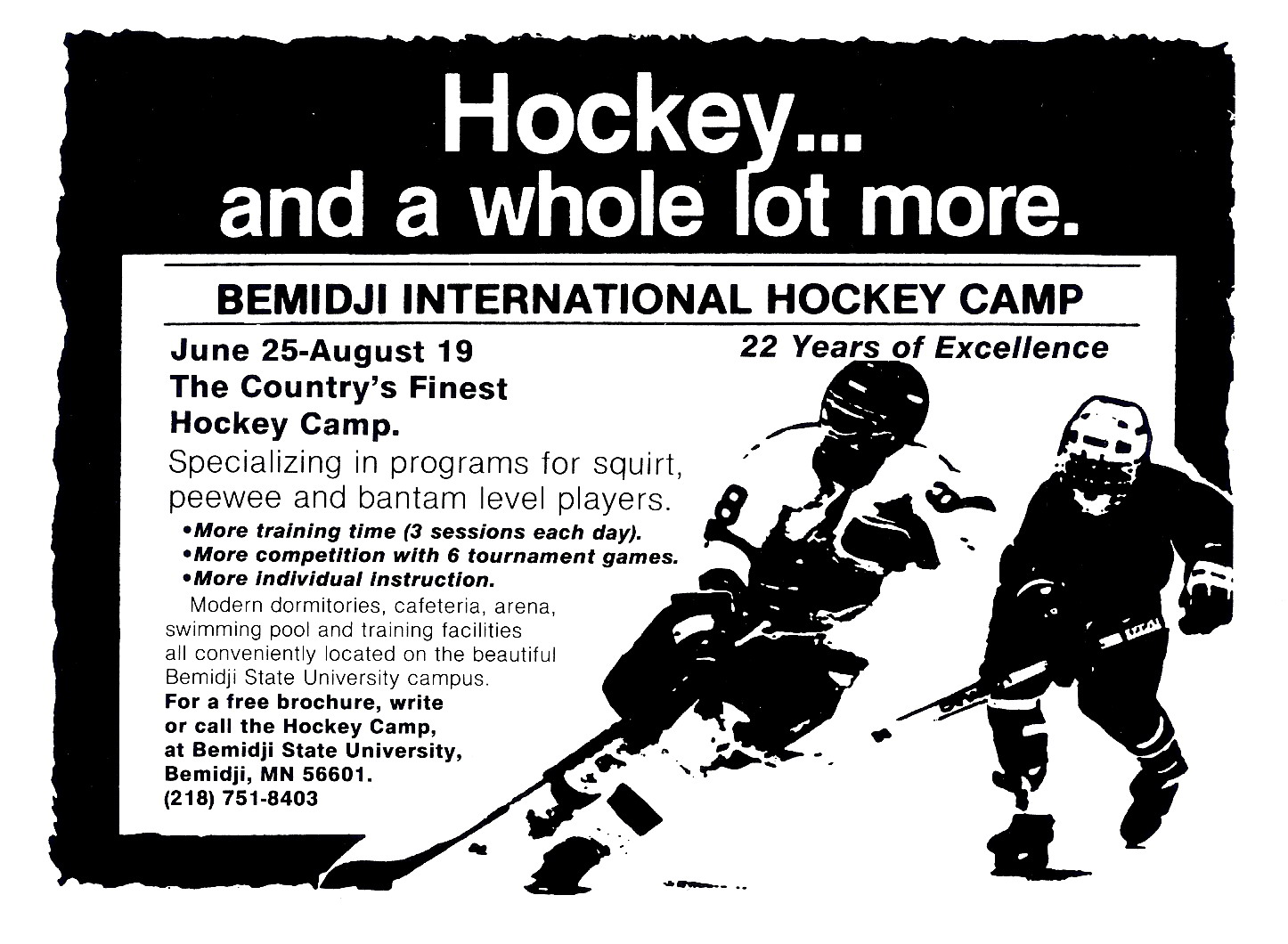 Minnesota Summer Hockey School/Camps