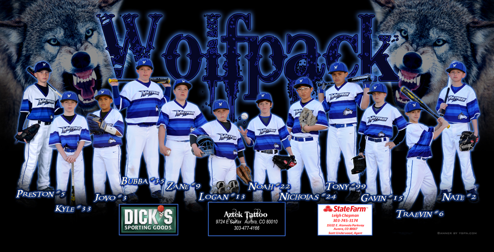 Baseball Banner Team Sports Custom