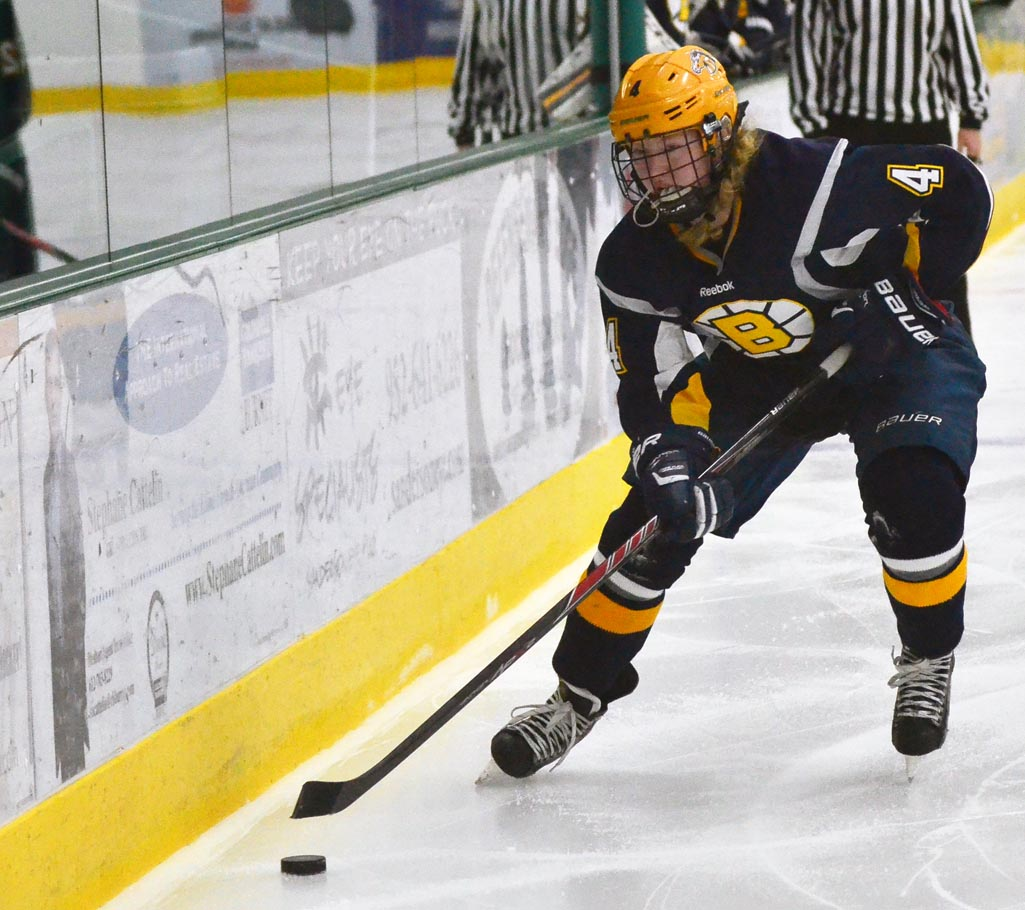 MN H.S.: Minnesota Ms. Hockey Semifinalists Named