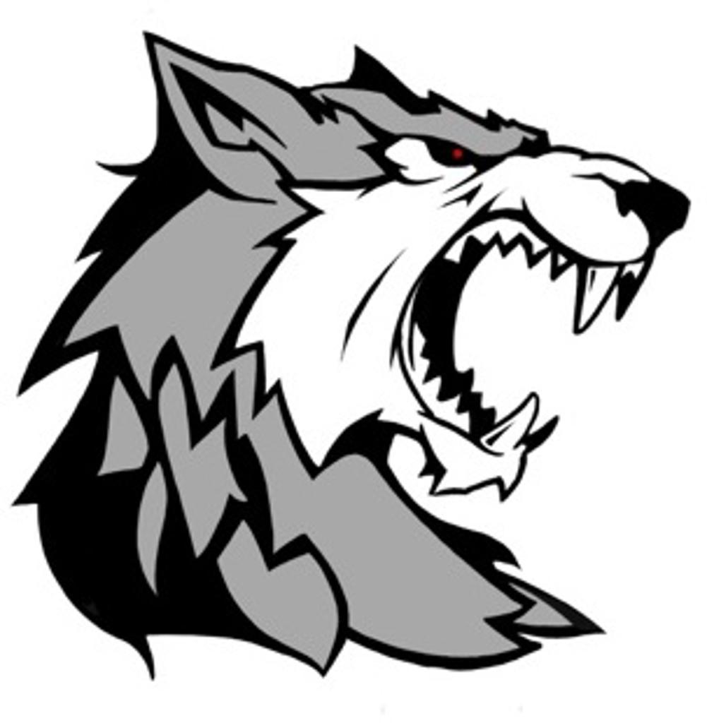 Tri County Timberwolves 15u 2015