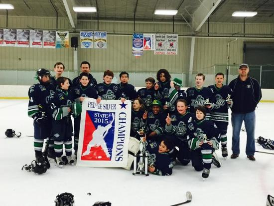 2015 12u Silver Sno-King Jr. Thunderbirds
