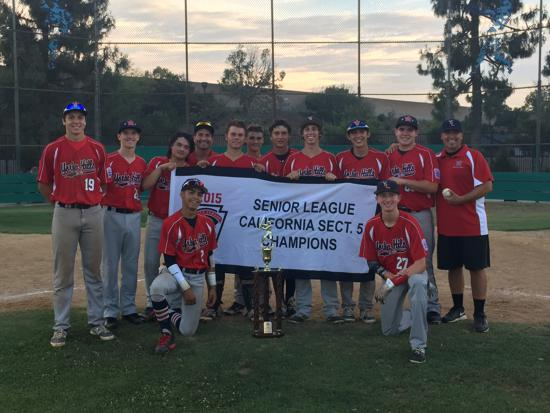 Senior League All Stars win Section 5 Tournament