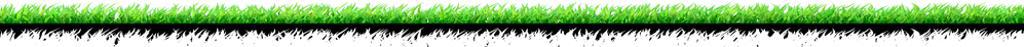 My7on7 Parent FAQ - Grass Banner
