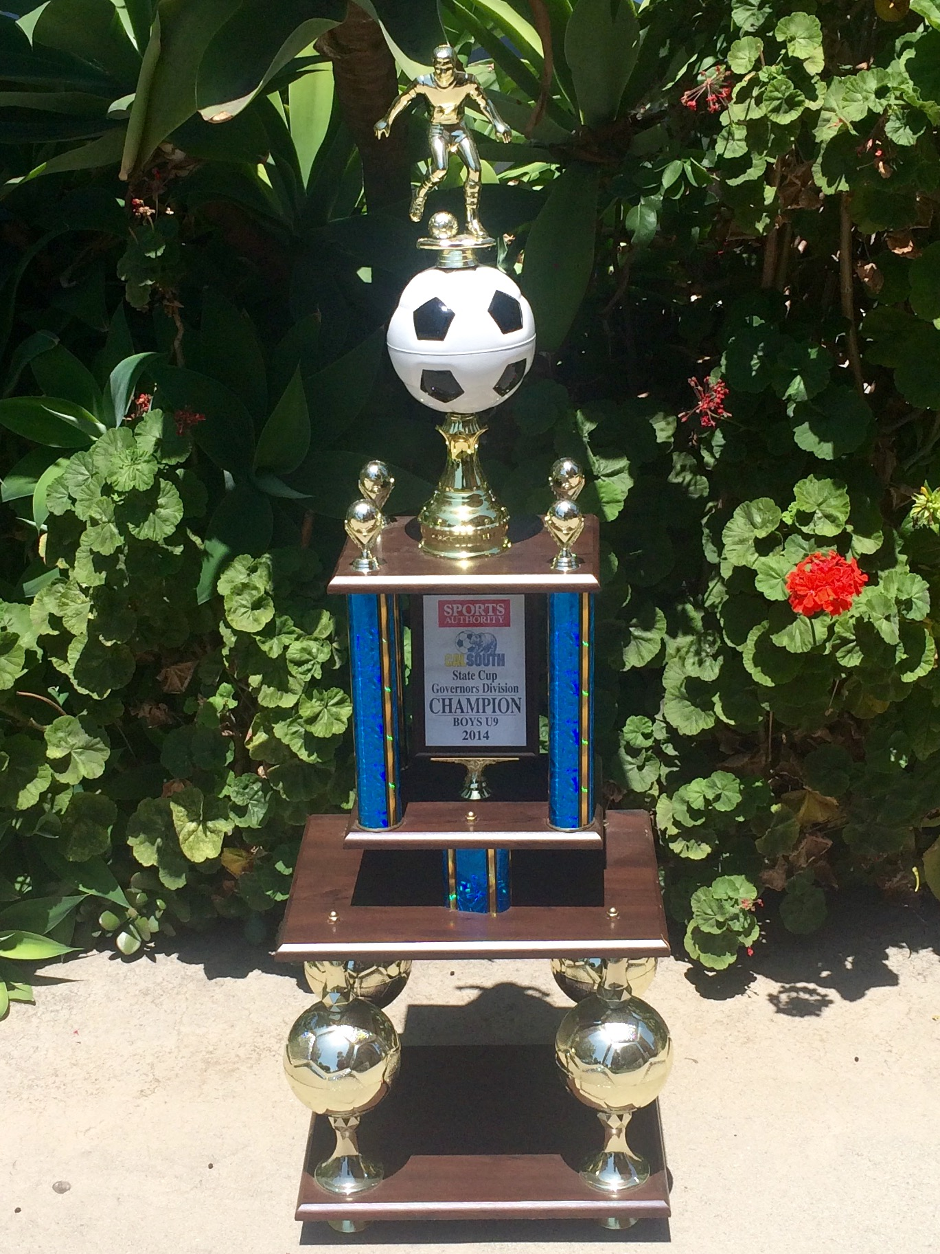 f5b61ef1 2014 State Cup Trophy - Courtesy of Omid Shokoufandeh