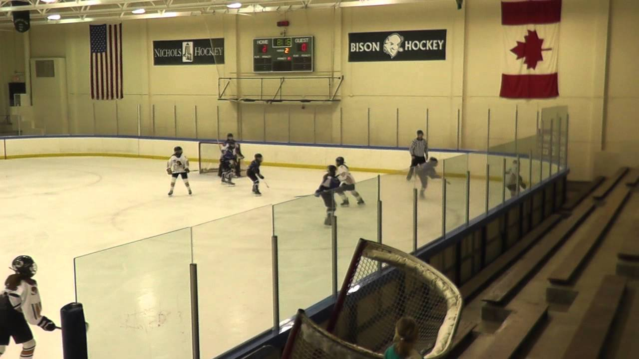 Buffalo Bison Hockey