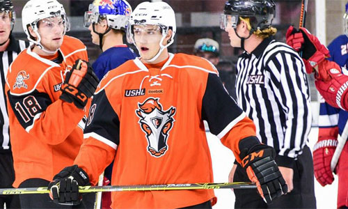USHL: Stampede Make Multiple Moves