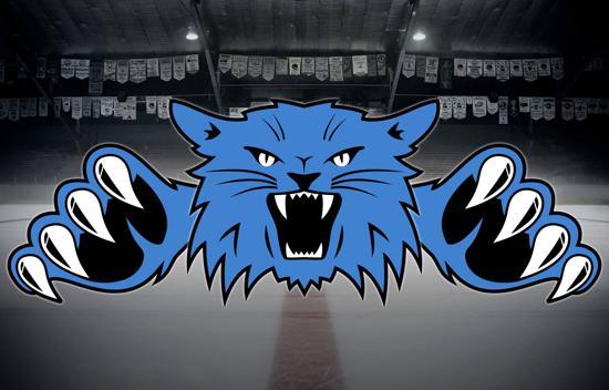 Dodge County Youth Hockey