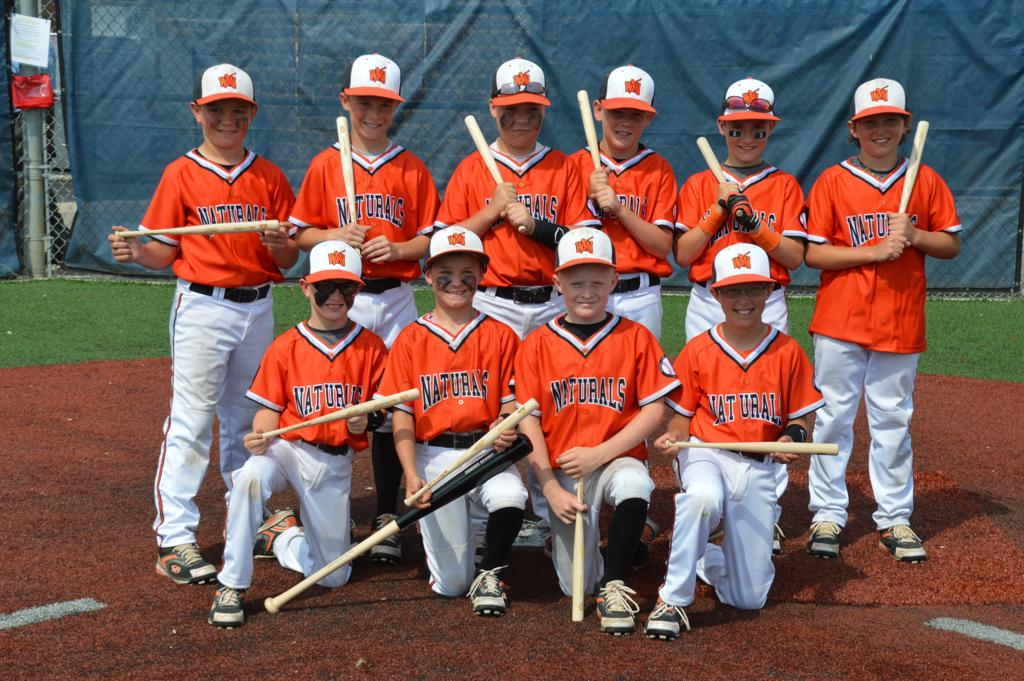 2014 Coaches Against MM 10U Runner Up Gold Division