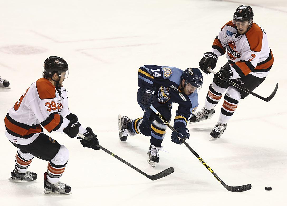 ECHL: Walleye's Home Win Streak Hits 8