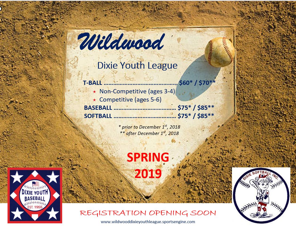Wildwood Dixie Youth League
