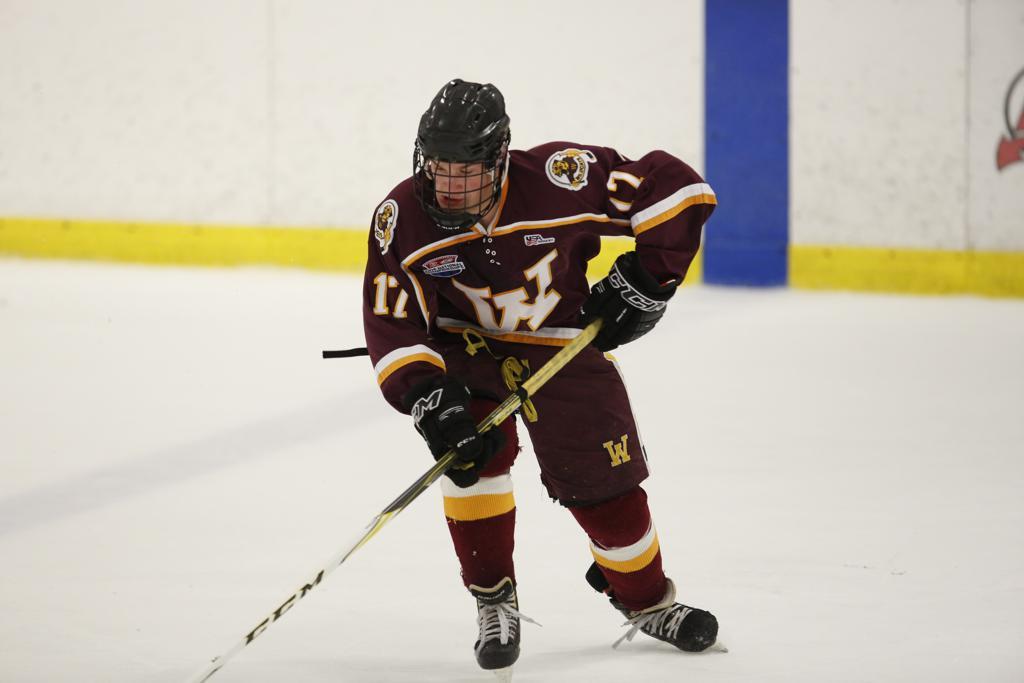 Capitol city midget hockey lansing
