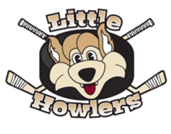 Little Howlers Hockey - Arizona Amateur Hockey Association