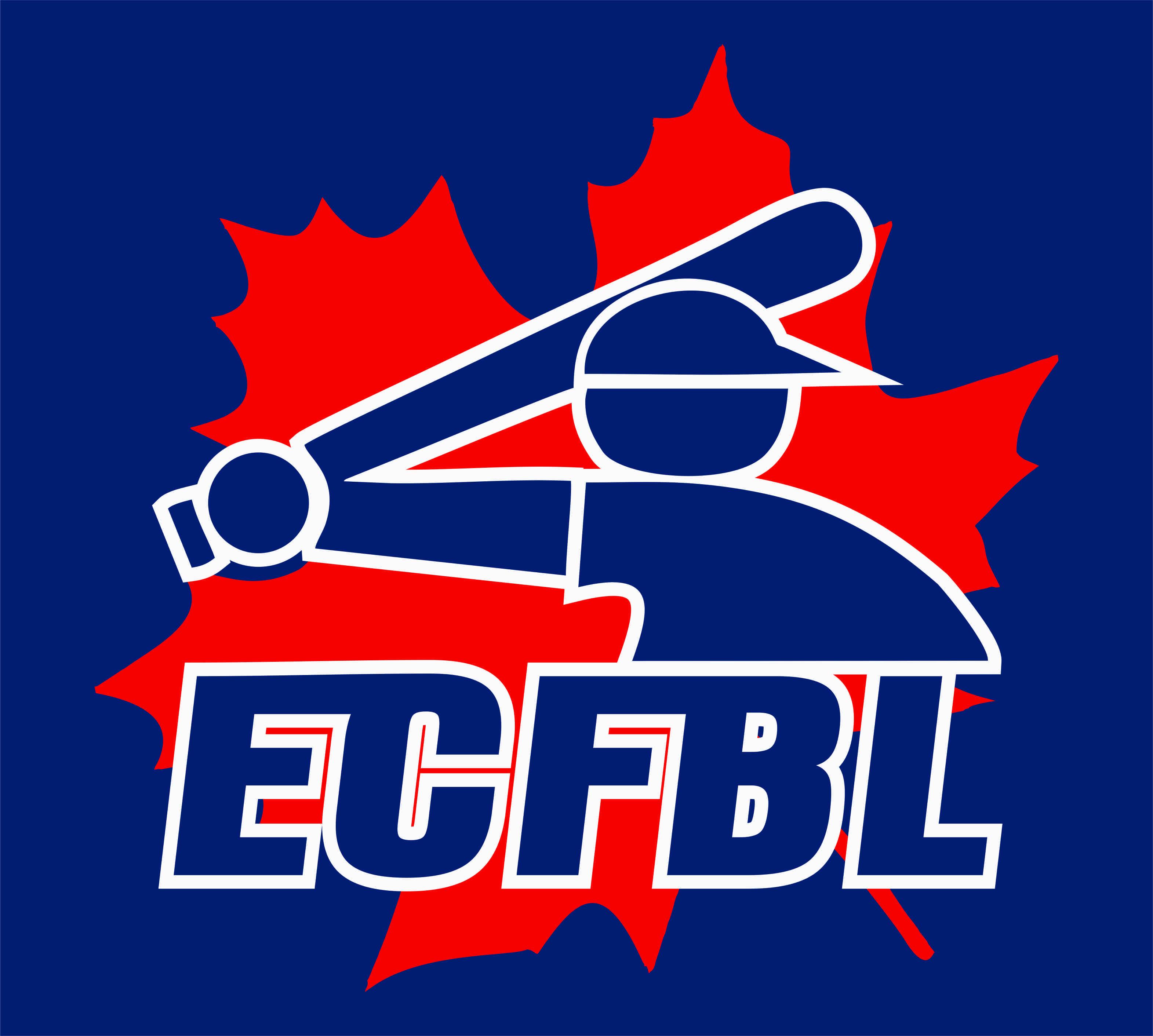 Eau Claire Fall Baseball League