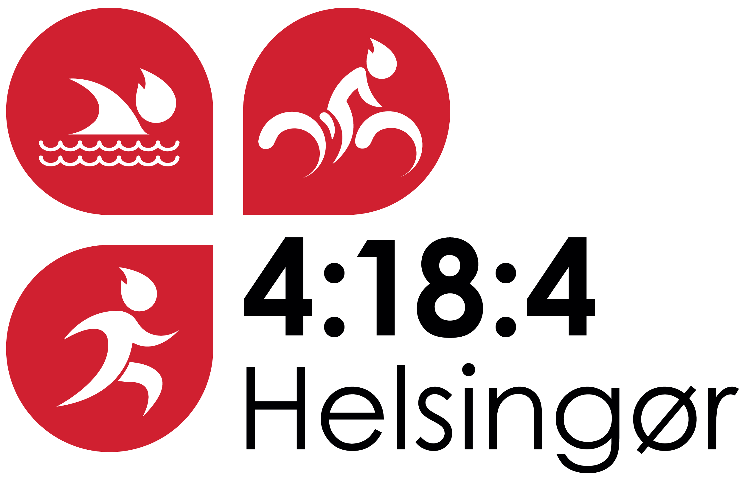 4184 Elsinore logo