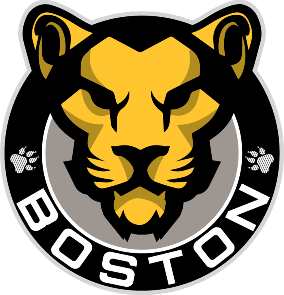 Image result for Boston Pride HOckey logo