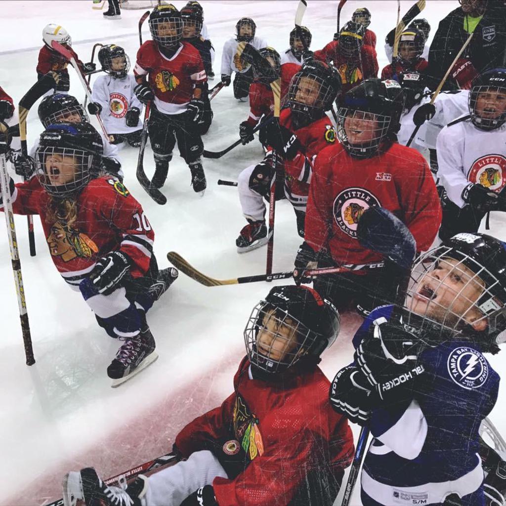 Learn to Play Hockey