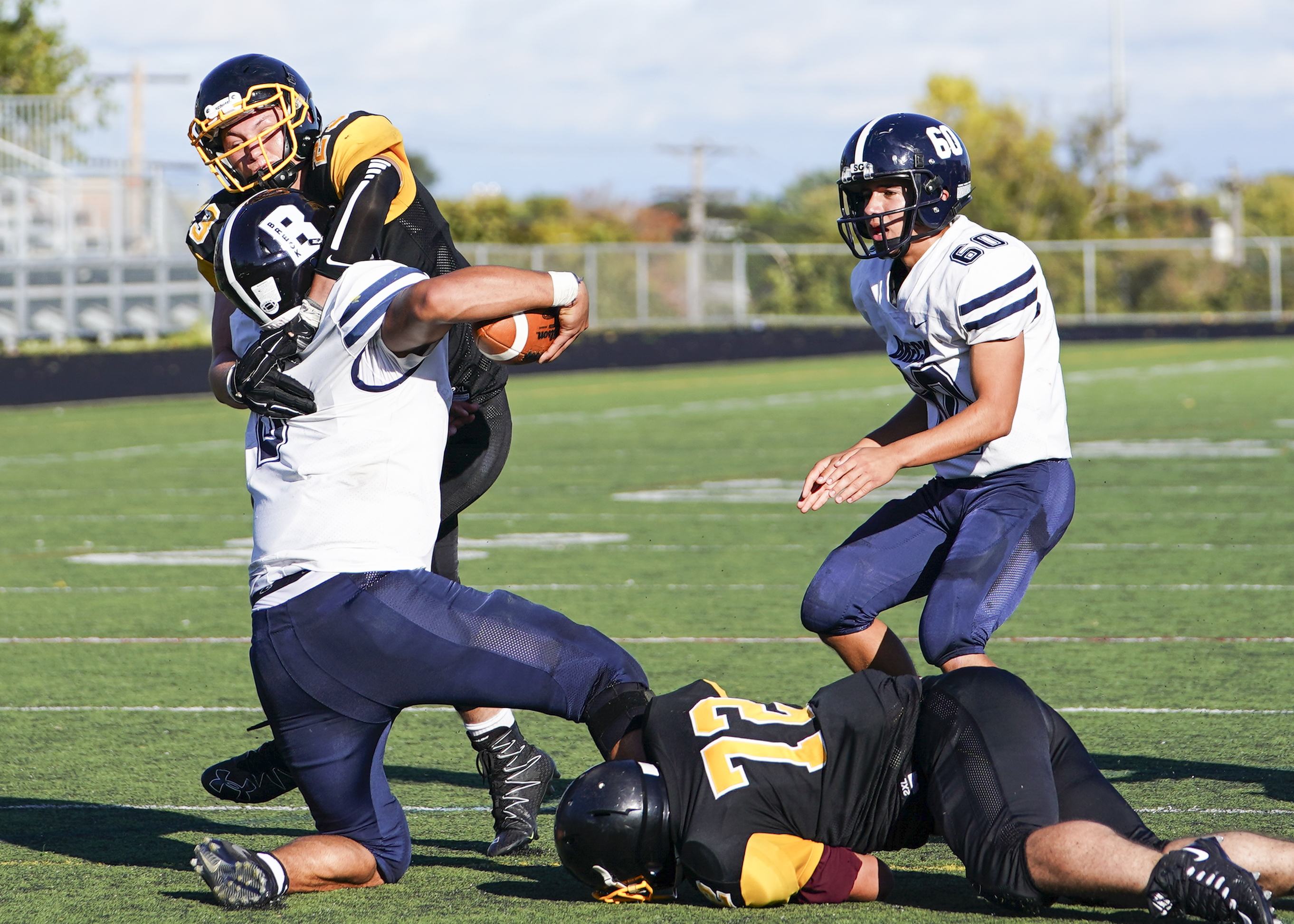 Como Park senior linebacker Donnie Ventrelli (23) collaborates with teammate Kaspian Menne (72) to sack Mustangs quarterback David Roddy late in the 3rd quarter as Como Park wins their homecoming game 18-13. Photo by Travis Ellison, SportsEngine